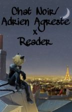 Adrien/Chat Noir x reader one-shots (REQUESTS OPEN) by Boi_Kawa666