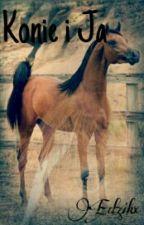 Konie I Ja(Zawieszam) by Edzikx