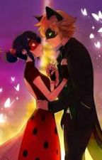 Chat Noir E Lady bug- O Amor Começa.  by dudamayumi12
