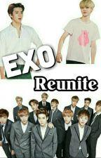 EXO Reunite by carmenriderrr
