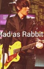 Mad As Rabbits (Ryan Ross Fanfic) by AdrienneTaylor2013
