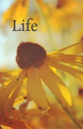 Life  by mariaxp3