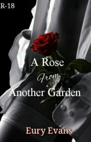 A Rose From Another Garden