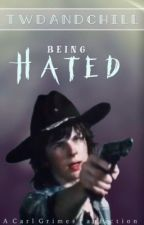 being hated |C.G.| Pausiert by TwdAndChill