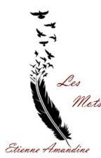 Les mots... by Amandine0820