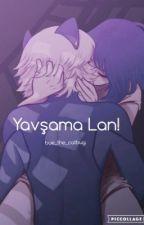 Yavşama Lan! - Miraculous Fanfic by Bue-sama