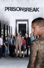 Cu Si Despre Seriale ( Prison Break , Lost, Breaking Bad, Ș.a.m.d.) by AnonymRoman12