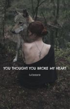 You Thought You Broke My Heart (On Hold) by Turtlesandbooks4ever