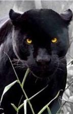 The Witch's Feline by ellieconlon
