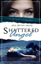 Shattered Angel by StormyTheZebra