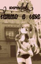 Camino A Casa ( Soarindash ) by nayla001