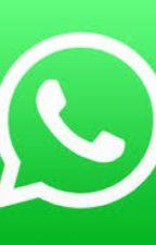 Whatsapp de miraculos ladybug   by curiosaXD
