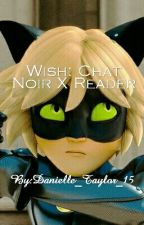 Wish | Chat Noir X Reader by Danniduhh