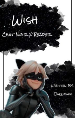 Wish: Chat Noir X Reader by Danniduhh