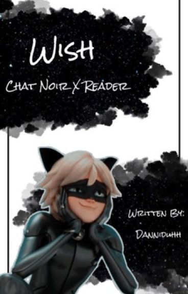 Wish: Chat Noir X Reader