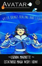 Avatar -  Legenda Marinette  by Biedronka1232116