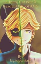 Adrien/Cat Noir X Reader ONE-SHOTS (On Hold) by lagsuperstar2