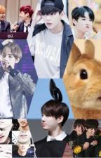 my cute rabbit  by TK_hopemin