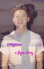 compass (a ricky garcia & fiym fanfic) by someotherhuman
