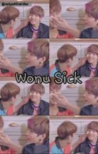 Wonu Sick [Meanie]✔ by HeyCupid