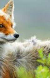 The Fox Girl by Hotdiggitydoggy