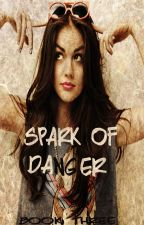 Spark Of Danger (Book Three Of The Danger Series) by heartofice97