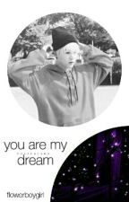 you are my dream; min yoongi x kim seokjin  by flowerboygirl