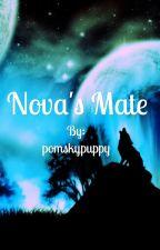 Nova's Mate by pomskypuppy