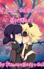 El amor de los dos-MariChat- by XimenaDelgado7