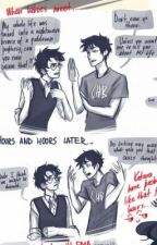 Percy Jackson and Harry Potter crossover by WallyRobin