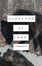 Acosando Al Lobo by CieMar070