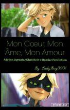 Mon Cœur, Mon Âme, Mon Amour (Adrian Agreste/Chat Noir x Reader Fanfiction)  by LadyBug0901