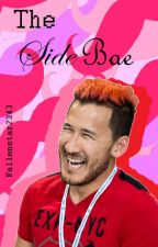 The Side Bae |Markiplier Fanfic| by Fallenstar2343