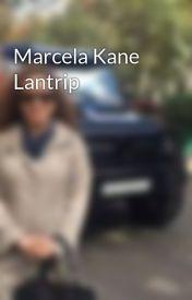 Marcela Kane Lantrip - Mentorship Mistakes by marcelakanelantrip