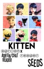 Kitten•Adrien X Reader by good-Ol-Seeds