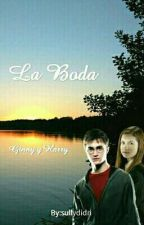 La Boda | Ginny y Harry by sullydidri
