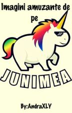 Imagini amuzante de pe Junimea by AndraXLY