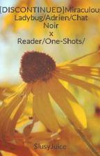 Miraculous Ladybug/Adrien/Chat Noir x Reader/One-Shots/  by SlusyJuice