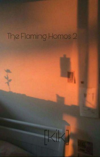 The Flaming Homos [Kik] 2
