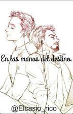 En las manos del destino by Elcasio_rico