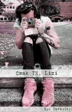 Csak TE, Lizi (H.S. fanfiction)|Befejezett| by BarbiStyles99