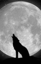 Lone Wolf by Sky_McCloud