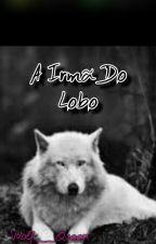 A Irmã Do Lobo. (Scisaac & Sterek) by Wolf__Queen
