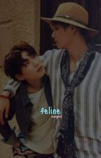 Feline (Vkook fanfic) on hold sorry :( by swaeglord