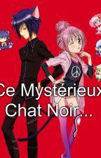 ►Ce Mystérieux Chat Noir ◄ by AmutoStories