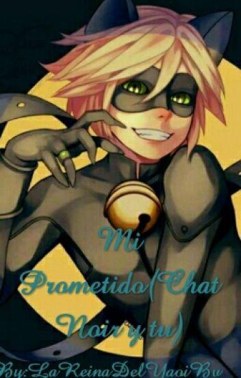 Mi prometido(Chat Noir y Tu)