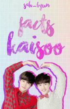 Facts KaiSoo  by Sah_Byun