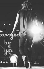 changed By You |H.S by Halma-Stylesss94