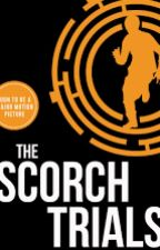 The scorch trials:Dangerous love by sharonXD8