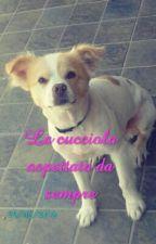 La Cucciola Da Sempre Aspettata  by st3p_ly